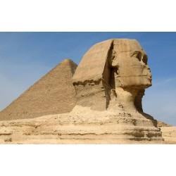 Majestic Cairo - 5N / 6D