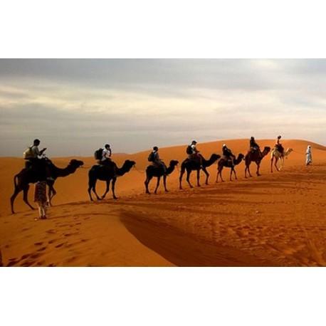 Rajasthan Desert Tour- 4N / 5D