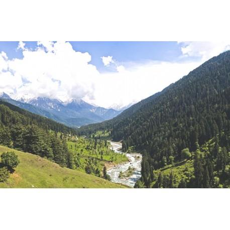 Charming Kashmir - 3N / 4D