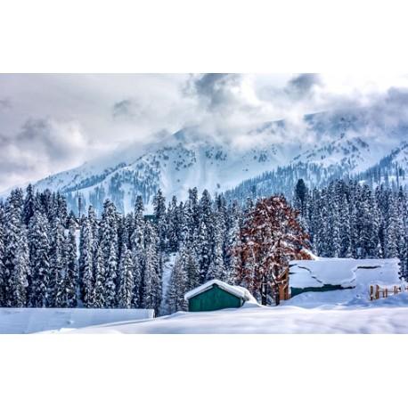 Blissful Kashmir - 7N / 8D